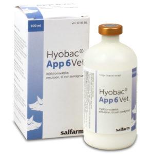 Hyobac App 6 Vet - 100 ml